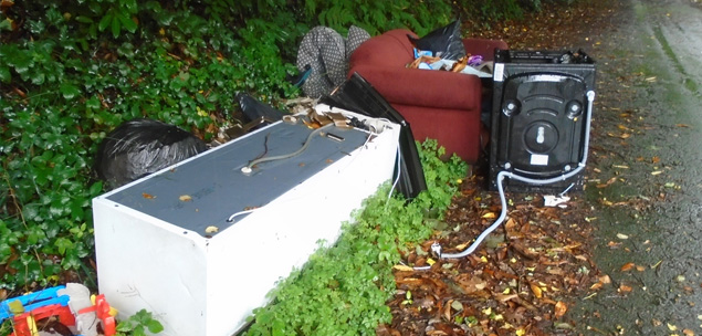 Cleaning up Fly Tipping